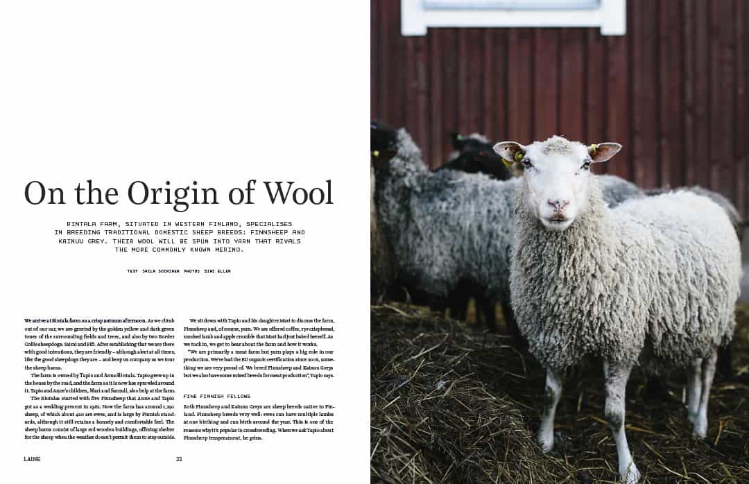 laine-issue-1-wool-b