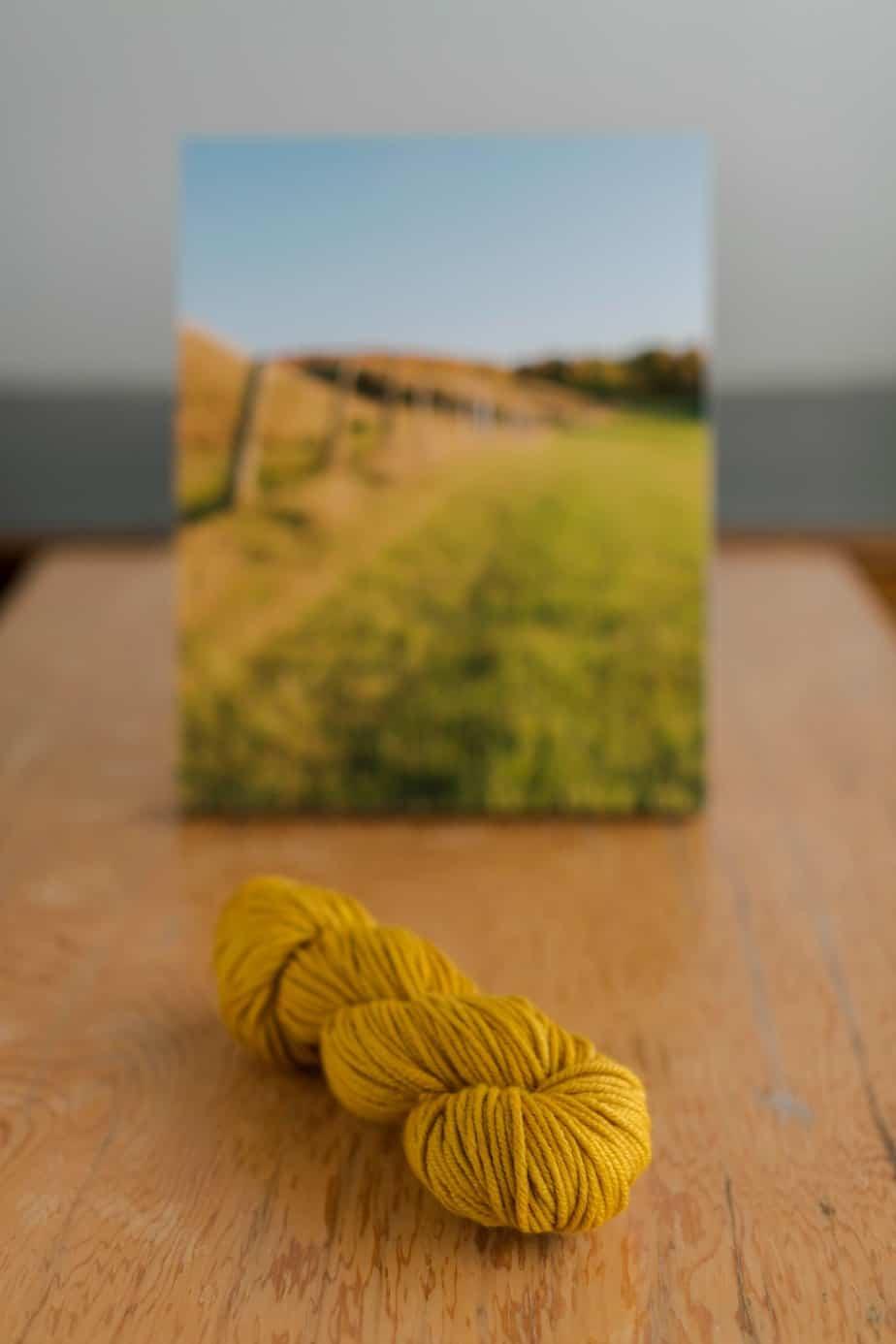 Blog | Wool & Honey | Yarn, Fiber & Other Sweet Delights